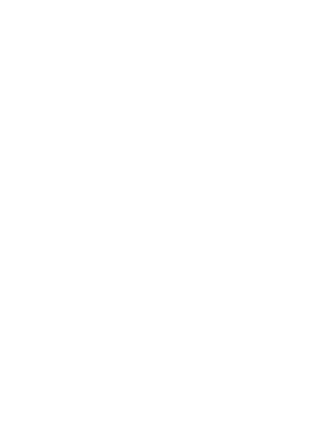 Illusion Surface Repairs Logo